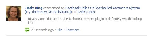 facebook comment plugin