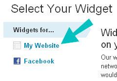 widget website