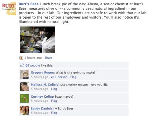 burts bee
