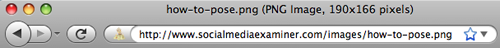Adressleiste des Browsers