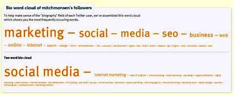 followerwonk bio word cloud report