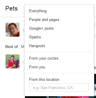 google plus search 1