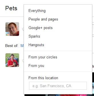 google plus search 1