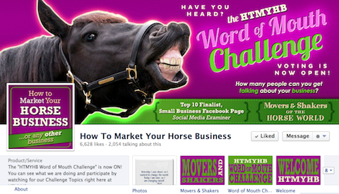 how to market your horse business