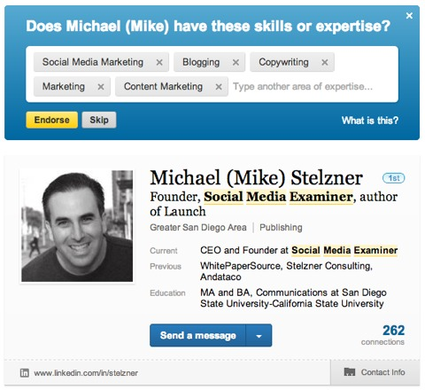 michael stelzner linkedin skills endorsement