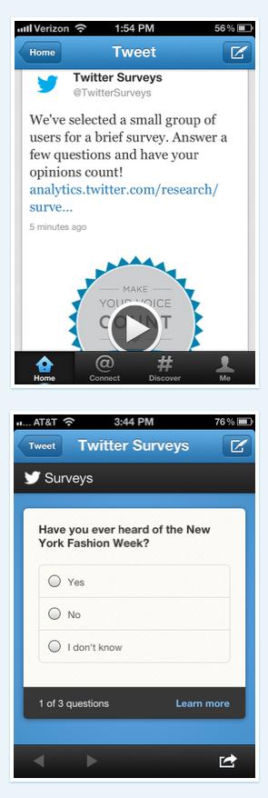 twitter surveys