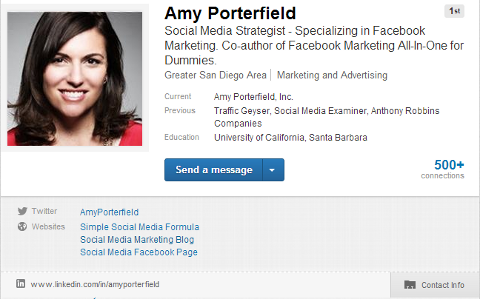 Basic Linkedin Profile  Professional Profile