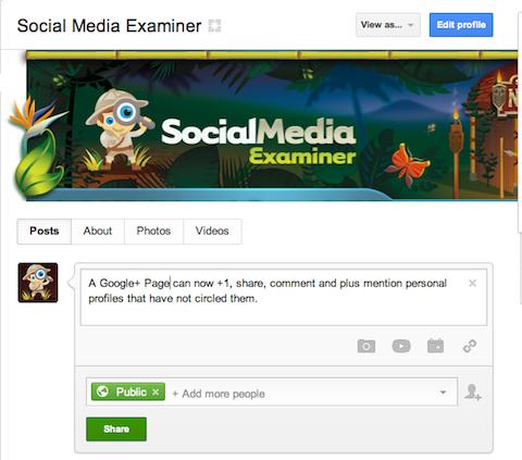 google+ page share