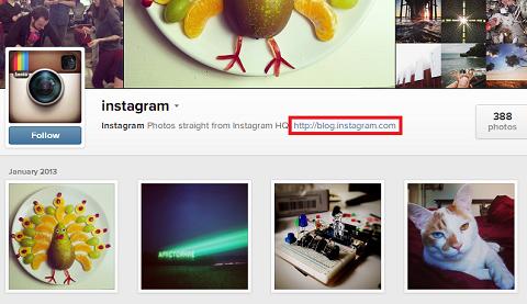 instagram web profile website