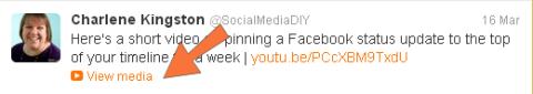 Twitter video in a tweet