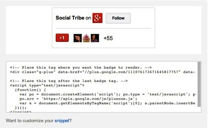 example of google+ badge code