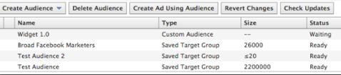 custom audience status