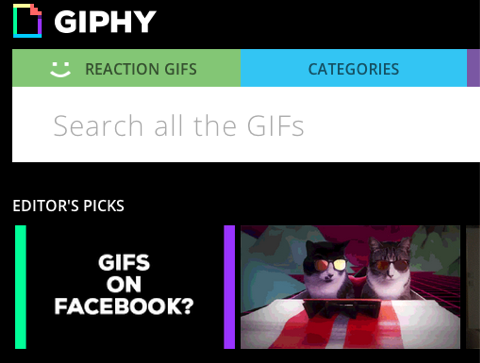 giphy on facebook