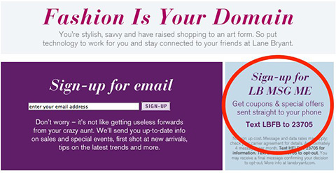lane bryant with call to action to graphic