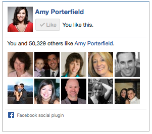 amy porterfield facebook like box