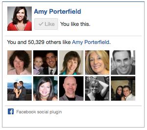amy porterfield facebook like box