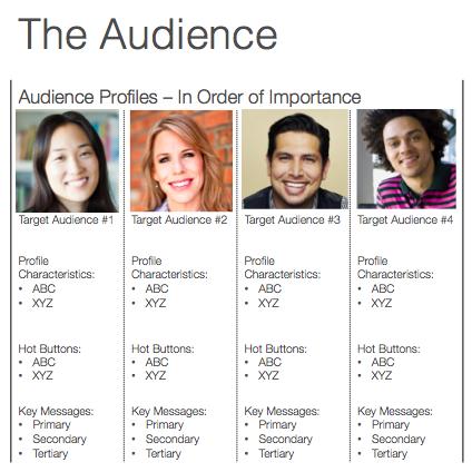 audience profile details