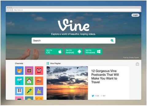 vine new look