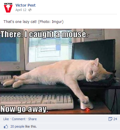 victor pest facebook post