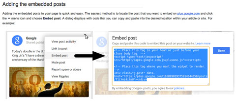 google plus post embed code