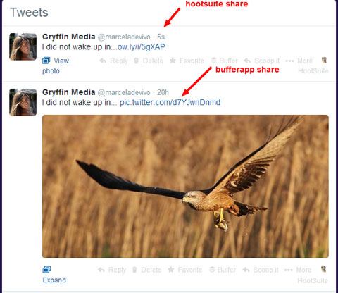 image share comparison for hootsuite and buffer