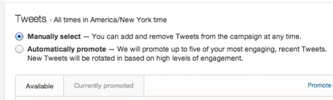 choosing promoted tweet campaign manual upload