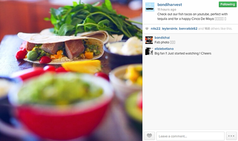 bondi harvest instagram profile
