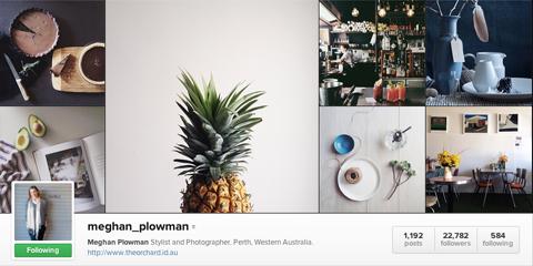 meghan plowman instagram profile