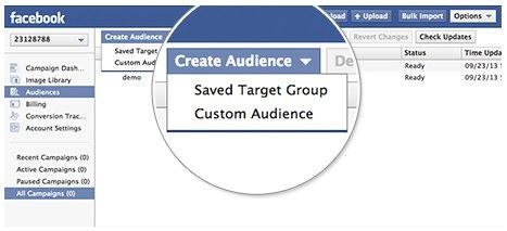 create custom audience in power editor