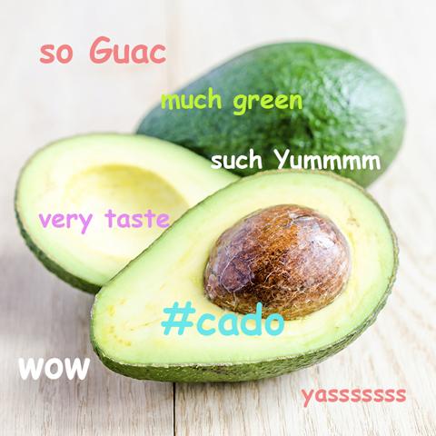 denny's avocado tumblr image