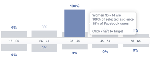 facebook audience insights age segment