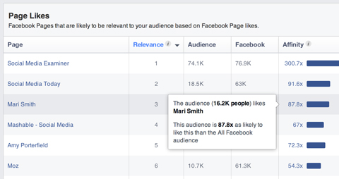 facebook audience insights segment affinity popup