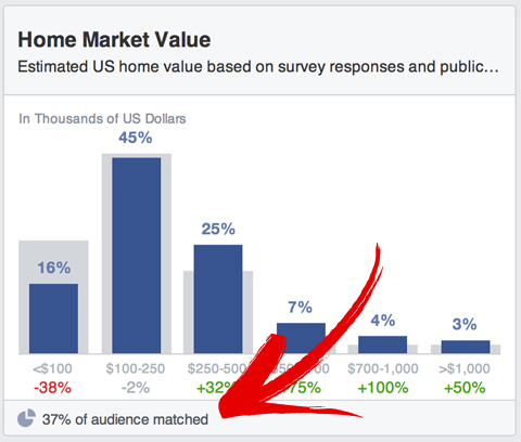 facebook audience insights match percentage