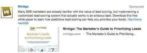 mintigo targeted update