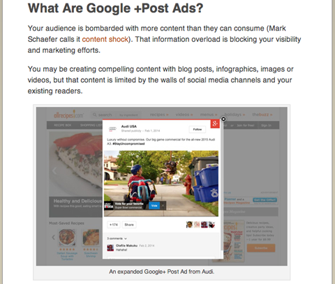 social media examiner marcela de vivo google plus article