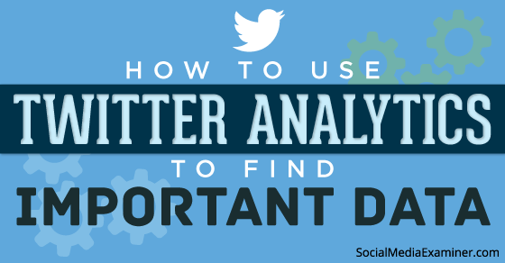 How to Use Twitter Analytics to Find Important Data |