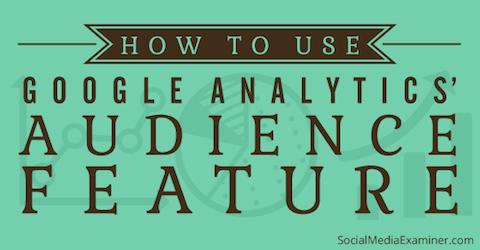google analytics audience