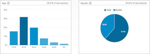 google analytics data demographics