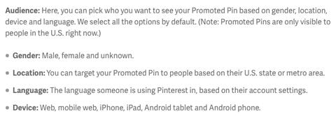 targeting promoted pin