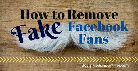 fake facebook fans
