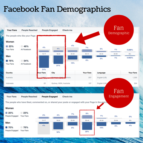 facebook fan demographic chart