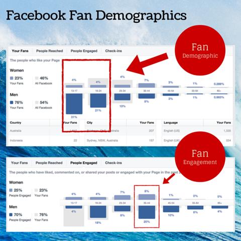 facebook fan demographic chart