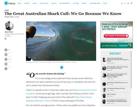 shark cull post