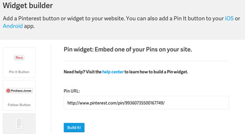 pin widget builder