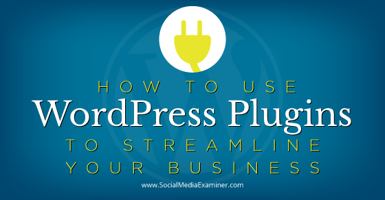 How to Use WordPress Plugins to Streamline Your Business