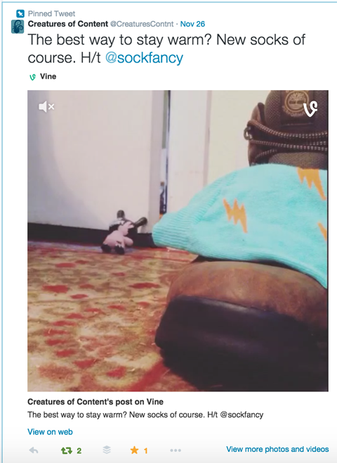 vine video on twitter