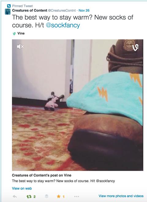 vine video on twitter