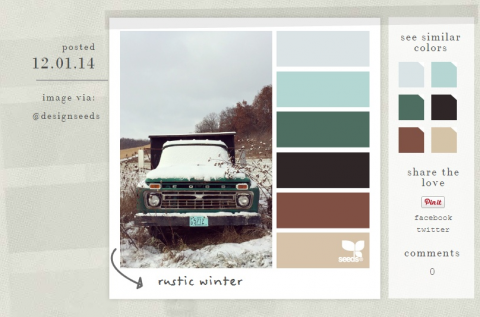 Design Seeds showcases color palettes in a photo so you can see how they look together.