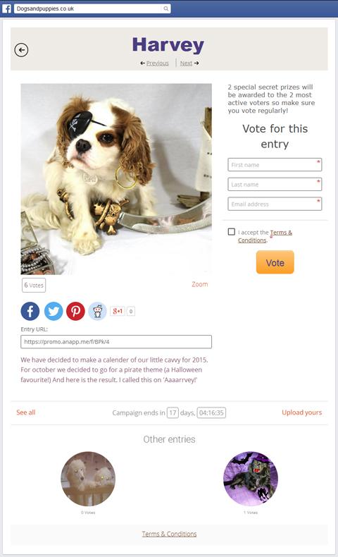 dogsandpuppies contest entry