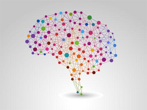 shutterstock brain image 130952750